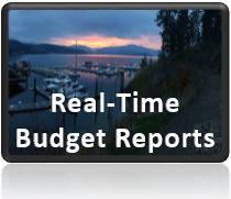 Real Time Budget