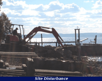 Image of a backhoe working on a shore