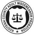 Adult Misdemeanor Probation logo
